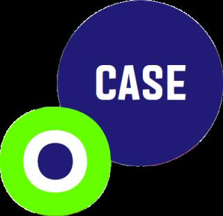 case-icon